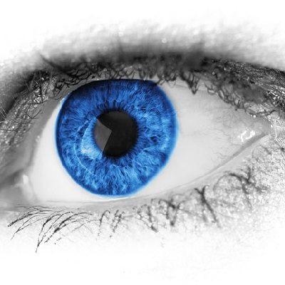 Close up of a blue eye